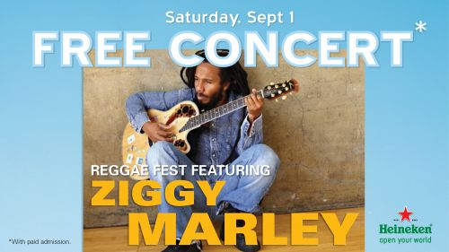 Ziggy Marley In Concert